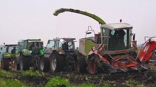 getlinkyoutube.com-Claas Jaguar 860 festgefahren im Donaumoos (Moor) / Claas Jaguar stuck at maize harvesting