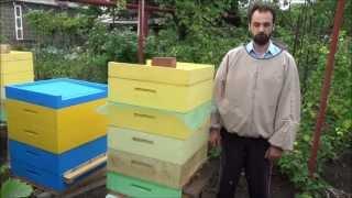 getlinkyoutube.com-Грызут ли пчелы пенополистирольный улей