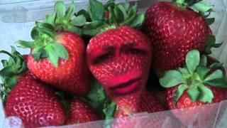getlinkyoutube.com-THE Annoying Strawberry epizode 1