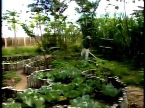 Fazenda orgânica Nutrilite - Globo Rural 2006 - completo.