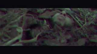 Zekwe - Zombies