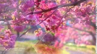 getlinkyoutube.com-10 دقائق رائعة مع موسيقى أجمل أغاني فيروز + مناظر ساحرة HD