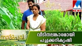 getlinkyoutube.com-Vegetable farming beautify a home | Manorama News