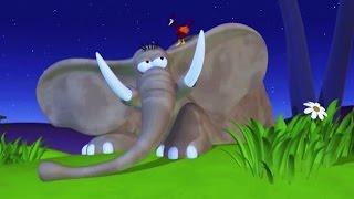 getlinkyoutube.com-Funny Animals Compilation   Funny Animals Cartoons Compilation Just For Kids Fun