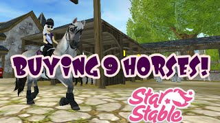 Buying 9 new horses! || Star Stable Online