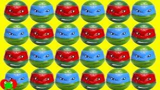 Teenage Mutant Ninja Turtles Surprises