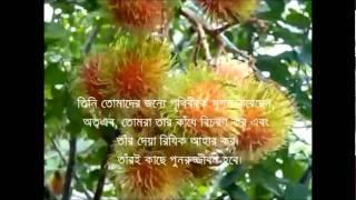 getlinkyoutube.com-Surah Mulk  (রাজত্ব) (mishari al afasi) with bangla translation