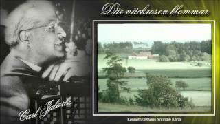 getlinkyoutube.com-- Där näckrosen blommar -  Carl Jularbos orkester spelar