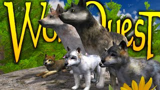 getlinkyoutube.com-Wolf Quest - WOLF SIMULATOR, BREED, HUNT, FORM PACKS (Gameplay)