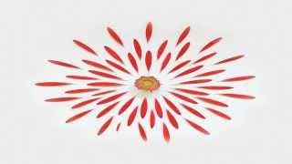 getlinkyoutube.com-Sambox - Solstice
