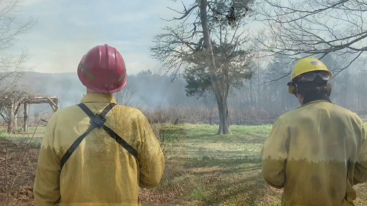 two firefighters watching smoke