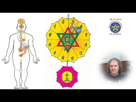 Nilton Schutz - Programa Caminhos da Consciência em 06/12/2014
