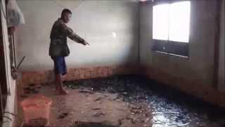 getlinkyoutube.com-น้ำเน่า ! น้ำตาตก ใช้ห้องนอนลูกสาวเลี้ยงปลาดุกแทนกระชัง