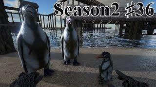 getlinkyoutube.com-カイルク(ペンギン)をテイム!【公式PVE鯖S2part36】【ARK Survival Evolved実況】