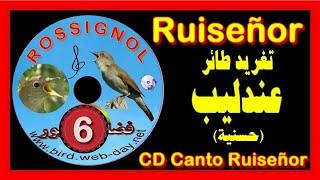 getlinkyoutube.com-CHANT DE ROSSIGNOL (1) (CD)الحسنية