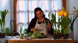 getlinkyoutube.com-Cómo conservar tulipanes después de su floración