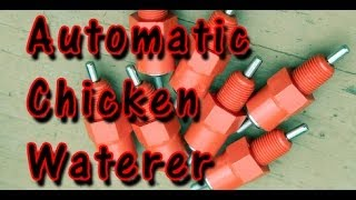 getlinkyoutube.com-how to make your own automatic chicken waterer with poultry nipples.  DIY CHEAP!