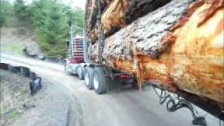 getlinkyoutube.com-Super loud Peterbilt 550 Cat with Jake screaming down Sumas Mt.