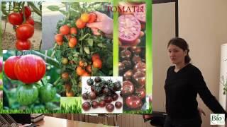 Томаты - как добиться большого урожая! (семинар)