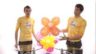 getlinkyoutube.com-Ромашки из шаров своими руками. Урок 4