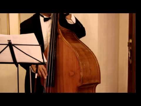 Quando Quando (heineken 海尼根廣告歌) - Fati Live Music: Wedding Jazz Band