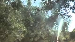 getlinkyoutube.com-Ψεκασμός με ζεόλιθο σε ελαιόδεντρα - Μέρος Α'