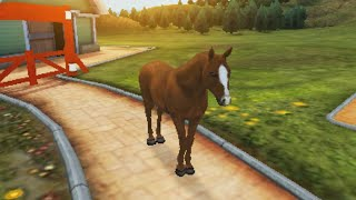getlinkyoutube.com-I Love My Horse Demo Gameplay [3DS]