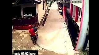 getlinkyoutube.com-MALING BURUNG DI RT 09/02 BARU PASAR REBO JAKTIM