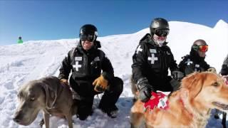 getlinkyoutube.com-Mt. Bachelor Avalanche Dogs