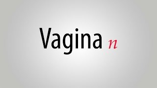 What is the meaning of vagina