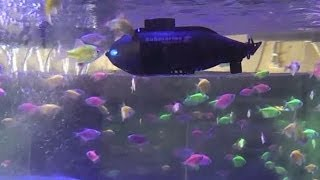 getlinkyoutube.com-Micro RC Submarine Review