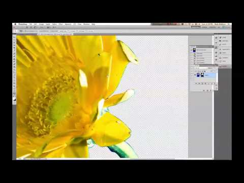 Clipping Paths: Ep 218: Digital Photography 1 on 1: Adorama Photography TV