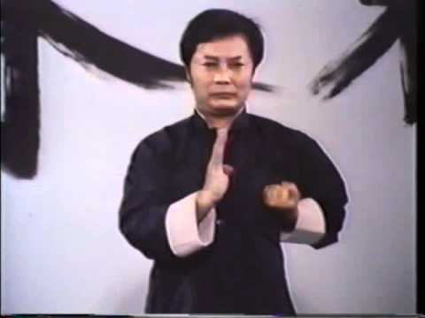 Wing Chun - Wong Shun Leung - Siu Lim Tau - slow