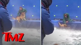 getlinkyoutube.com-A DOG'S PURPOSE' TERRIFIED GERMAN SHEPHERD FORCED INTO TURBULENT WATER | TMZ