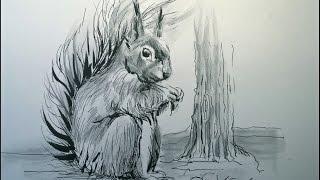 getlinkyoutube.com-Hoe teken je een eekhoorn / dieren tekenen / #40