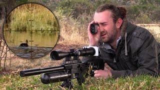 getlinkyoutube.com-Hunting Red-Billed Teals in the Karoo