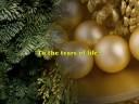 Buddhist Hymn #07- WHY by The Wayfarers