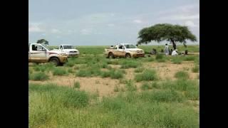 getlinkyoutube.com-الرشايده في السودان