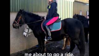 milly the horse xx
