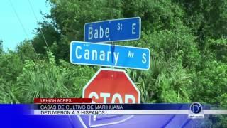 Casas de cultivo de marihuana en Lehigh Acres