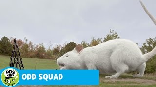 getlinkyoutube.com-ODD SQUAD: THE MOVIE | Ginormouse | PBS KIDS