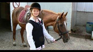 getlinkyoutube.com-Manege Hippotel - Van Horne Hoeve - Paarden & Country / Weert 2013