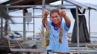 Foodwork กุ้งมังกร : 29 มี.ค. 58 (HD)