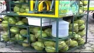 COCO FÁCIL- Máquina para Extrair Água do Coco verde