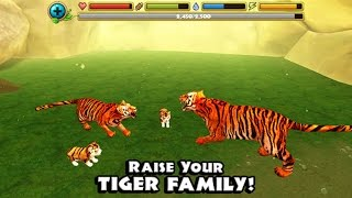 getlinkyoutube.com-Tiger Simulator - By Gluten Free Games  - Compatible with iPhone, iPad, and iPod touch.