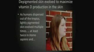 The Evolution of Human Skin Pigmentation