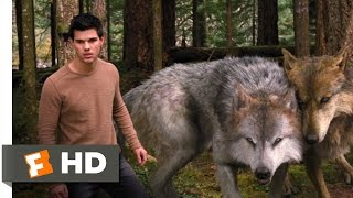 getlinkyoutube.com-Twilight: Breaking Dawn Part 2 (3/10) Movie CLIP - A Wolf Thing (2012) HD