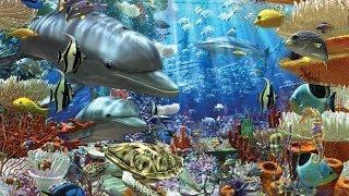 getlinkyoutube.com-Ocean Wonders Encountering sea monsters HD 1080p