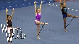 getlinkyoutube.com-Bungee Cord Gymnastics | Resistance Training | Whitney Bjerken