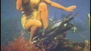 getlinkyoutube.com-Sophia Loren - Boy On a Dolphin